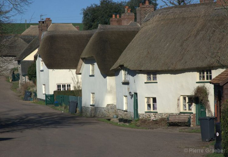 Thatched houses in the village